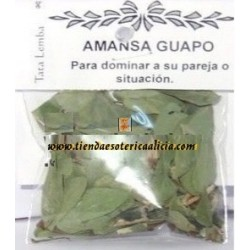 AMANSA GUAPO