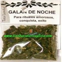 GALAN DE NOCHE